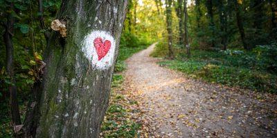 Weg Herz